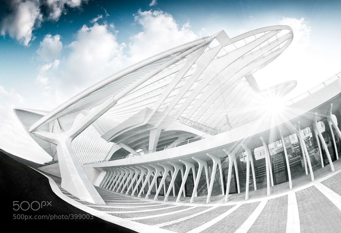 Photograph guillemins I by Johannes Heuckeroth on 500px