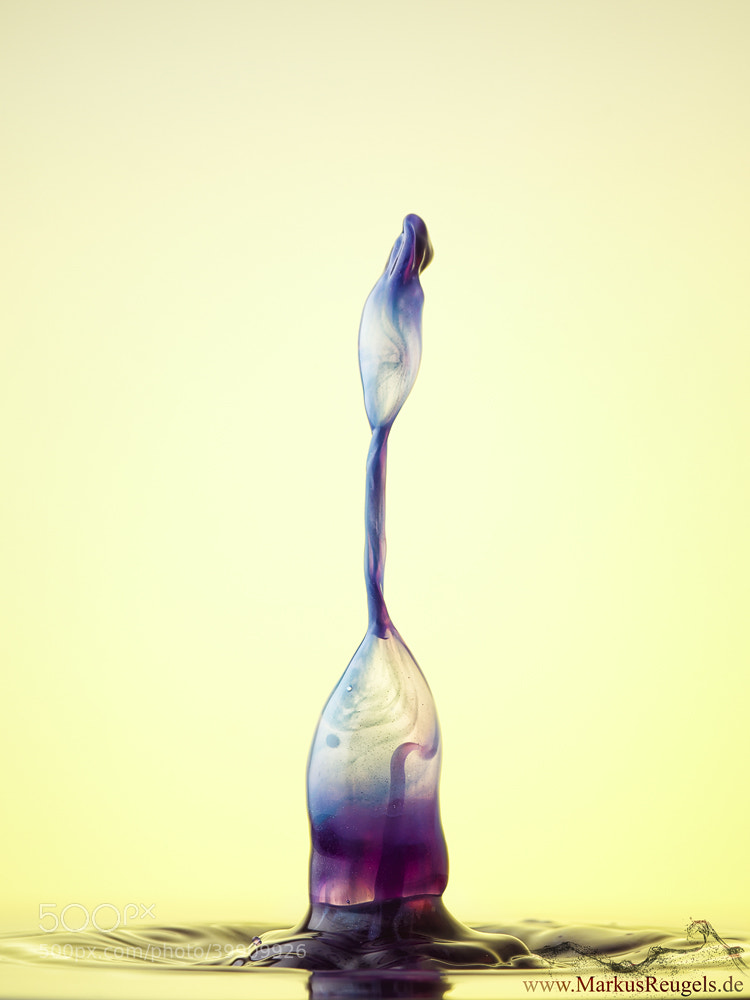 Photograph Funky drop by Markus Reugels on 500px