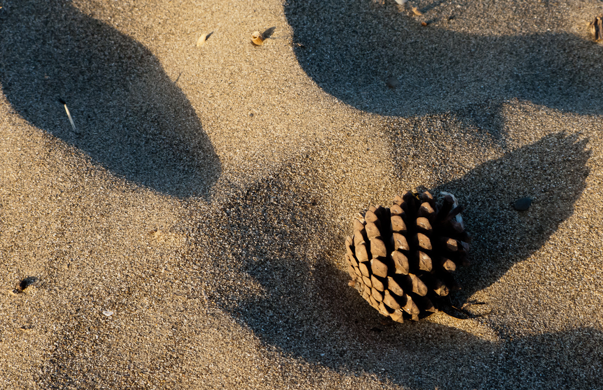 Photograph geometry on the shore by Domenico Franco on 500px