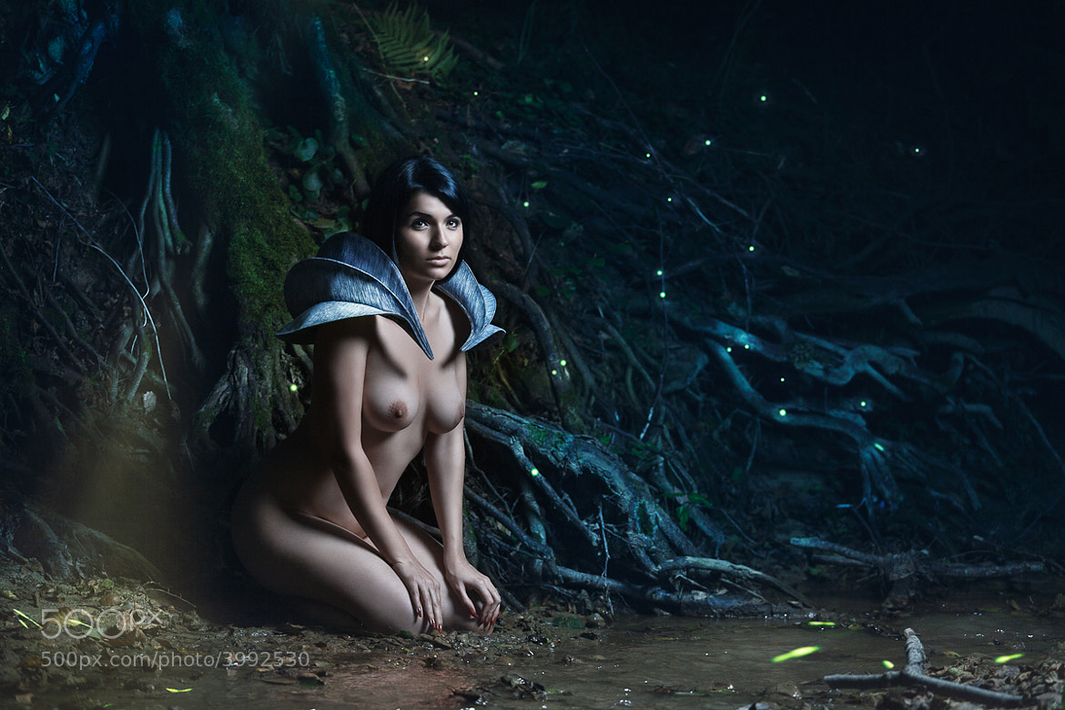 Photograph Land Of The Forest Elves by Daniel Ilinca on 500px