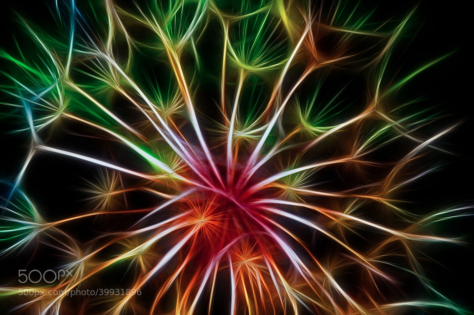 Photograph Fireworks by Michel Bochet-Mérand on 500px