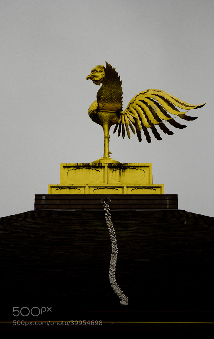Photograph Phoenix on top of the Pavilion by Scott Novak on 500px