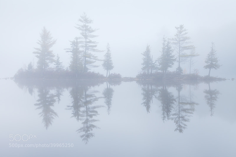 Photograph Misty Morning, Vermont by Sarah Marino on 500px