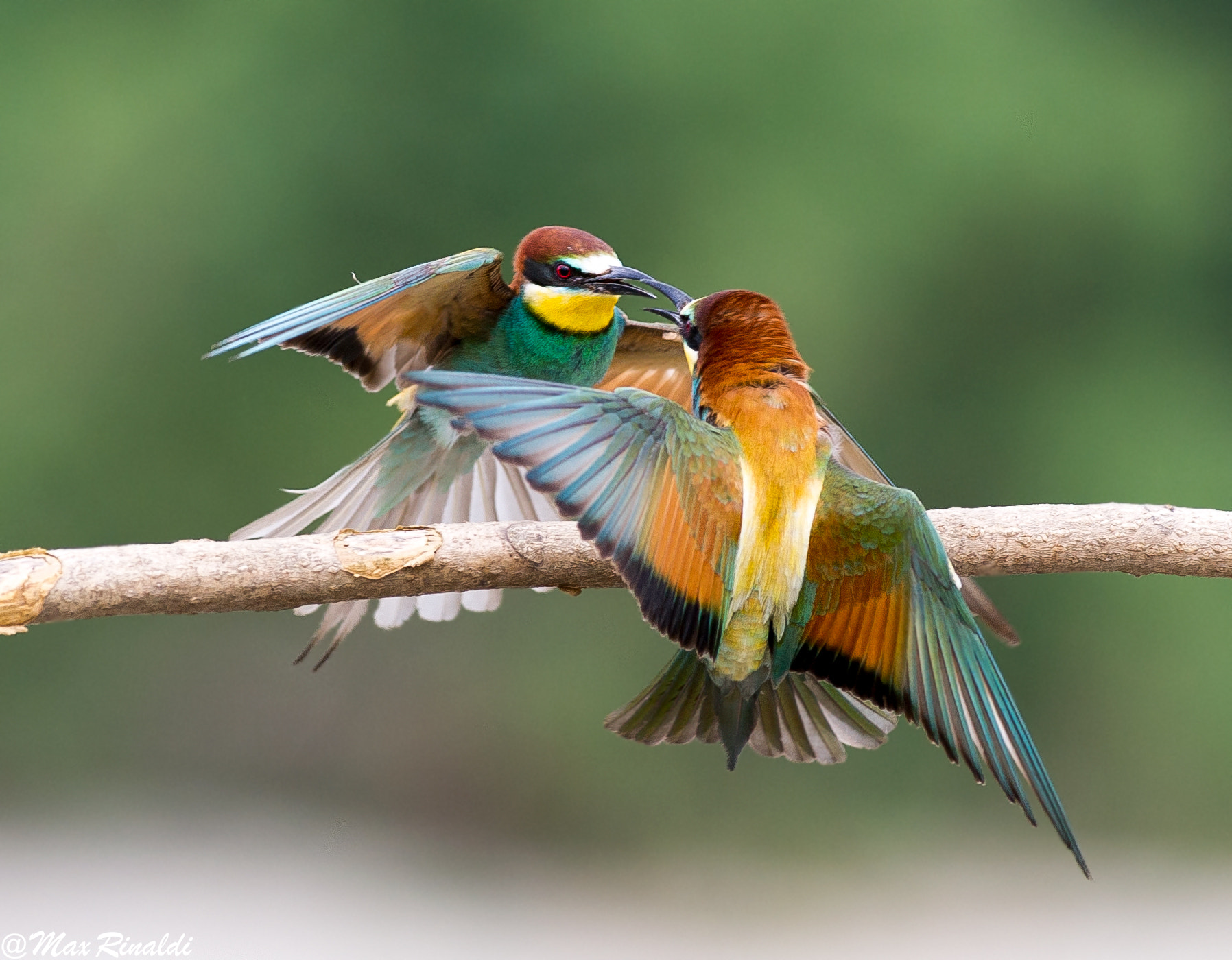 Photograph Fight Club by Max Rinaldi on 500px