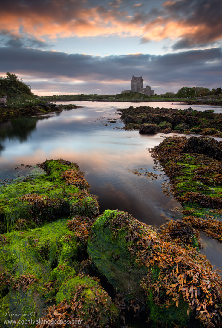 Photograph Dawn at Dunguaire by Stephen Emerson on 500px