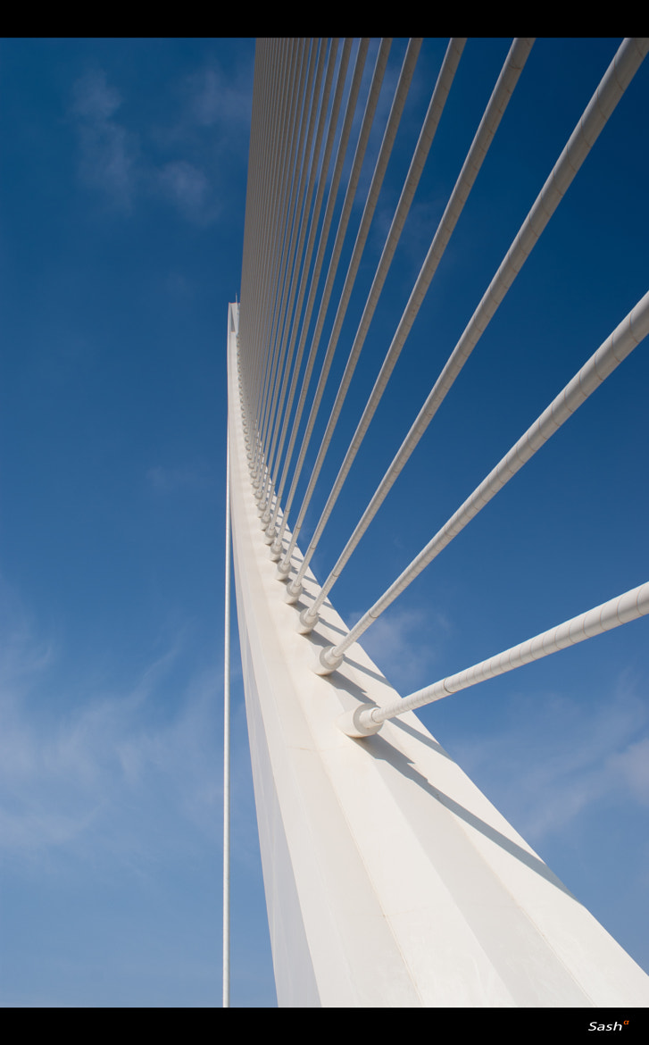 Photograph Calatrava bridge by Sasa Bremec on 500px