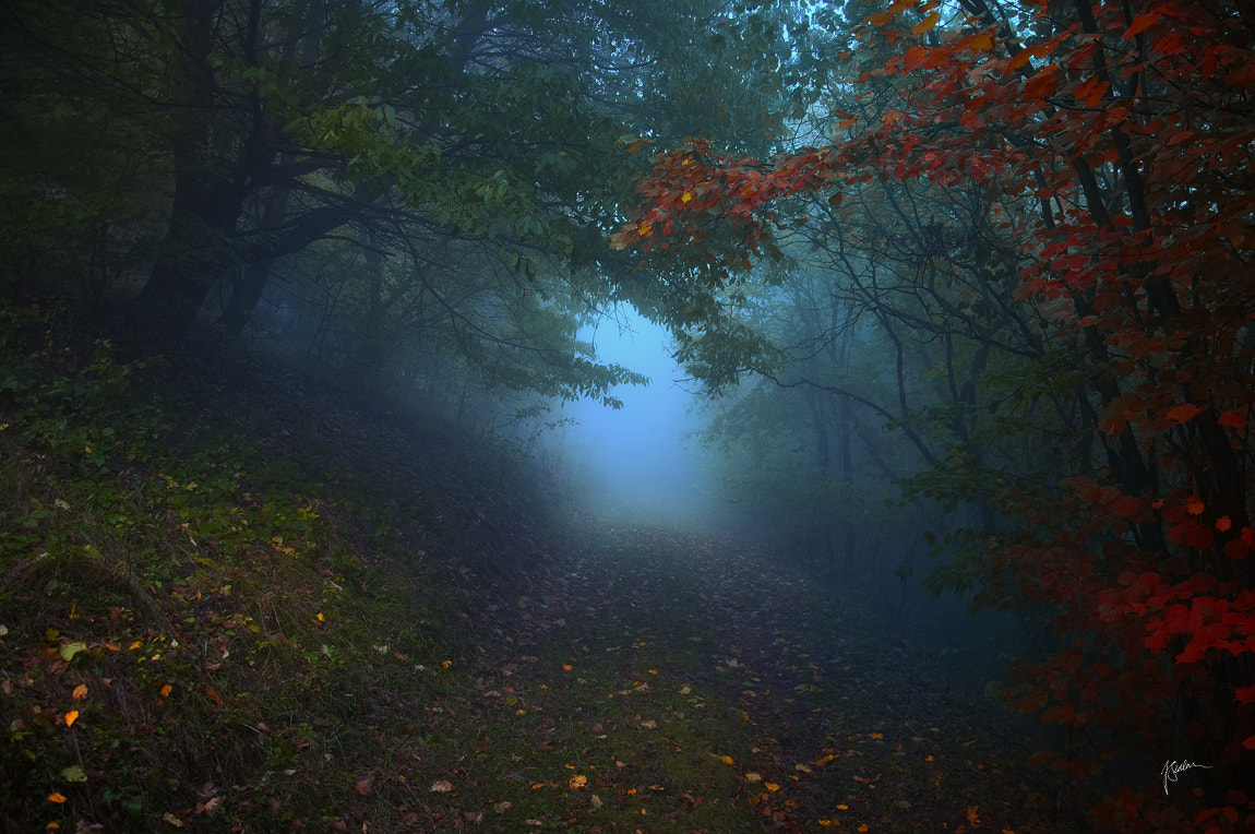 Photograph Road beyond borders our daily thoughts by Janek Sedlar on 500px