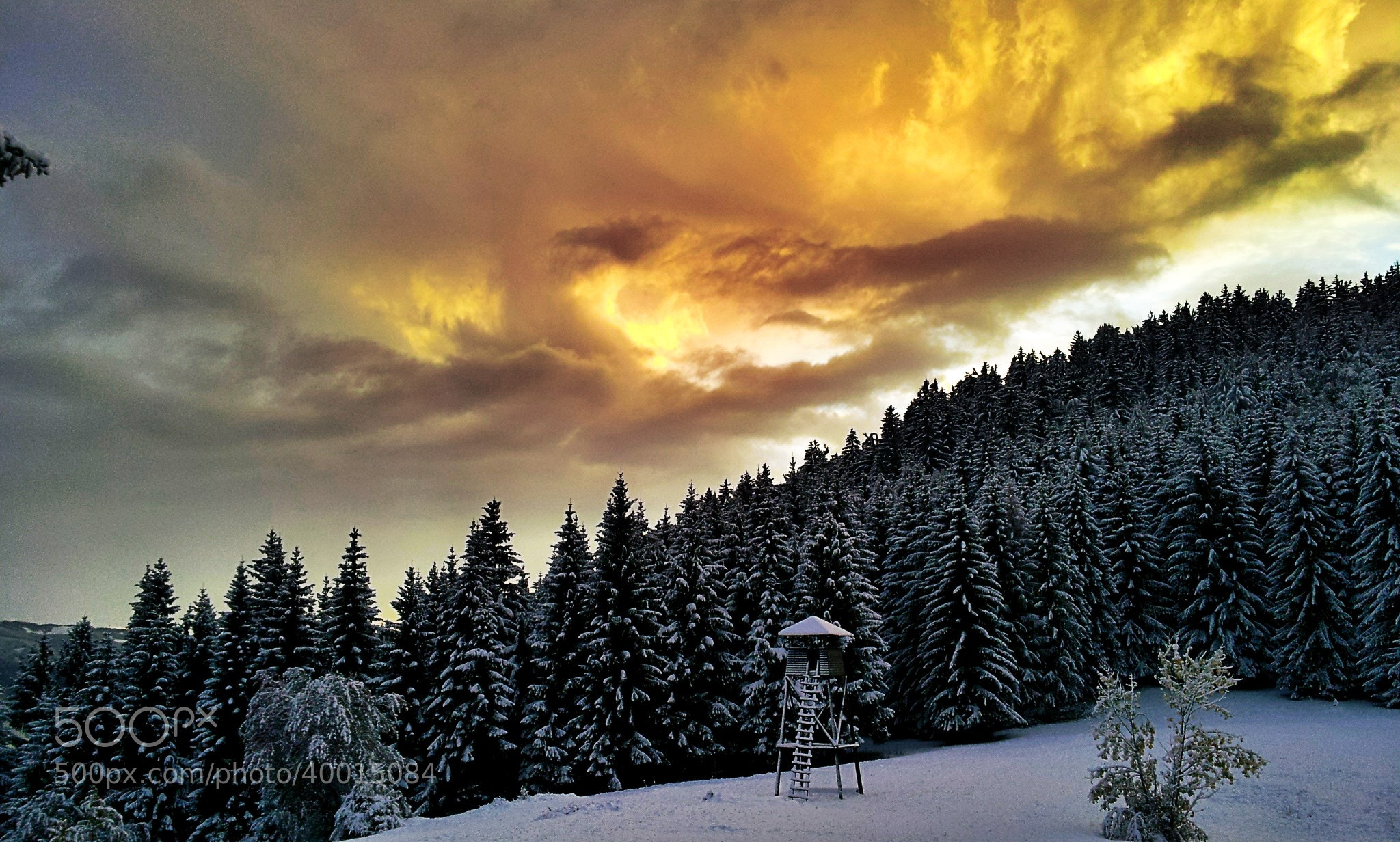 Photograph Magical early winter by Filip Eremita on 500px