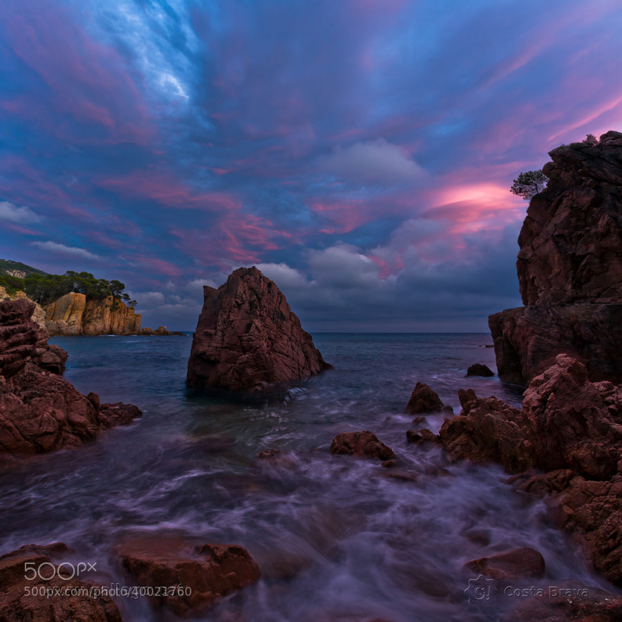 Photograph Costa Brava, live nature 19 by Jordi Gallego on 500px
