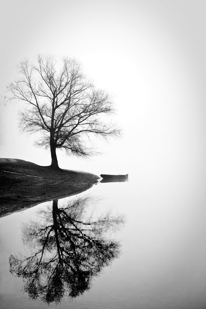 Photograph Mirroring by Luca Martelli on 500px
