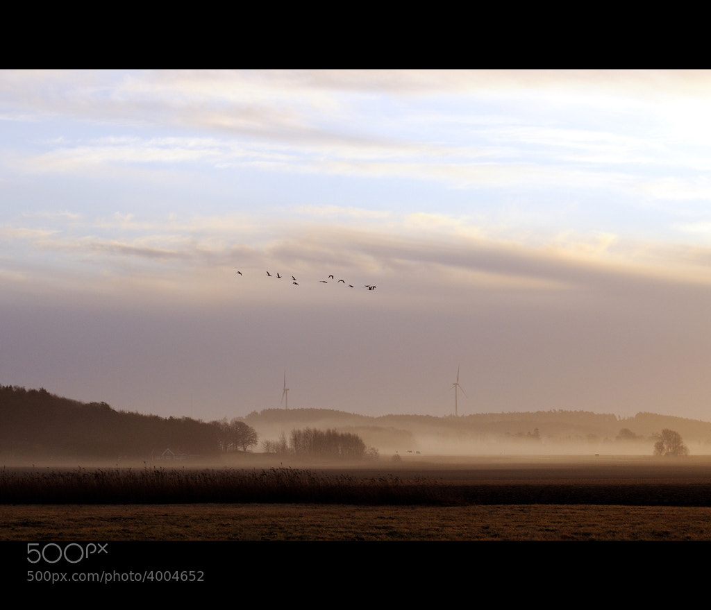 Photograph Wind power II by Almqvist Photo on 500px