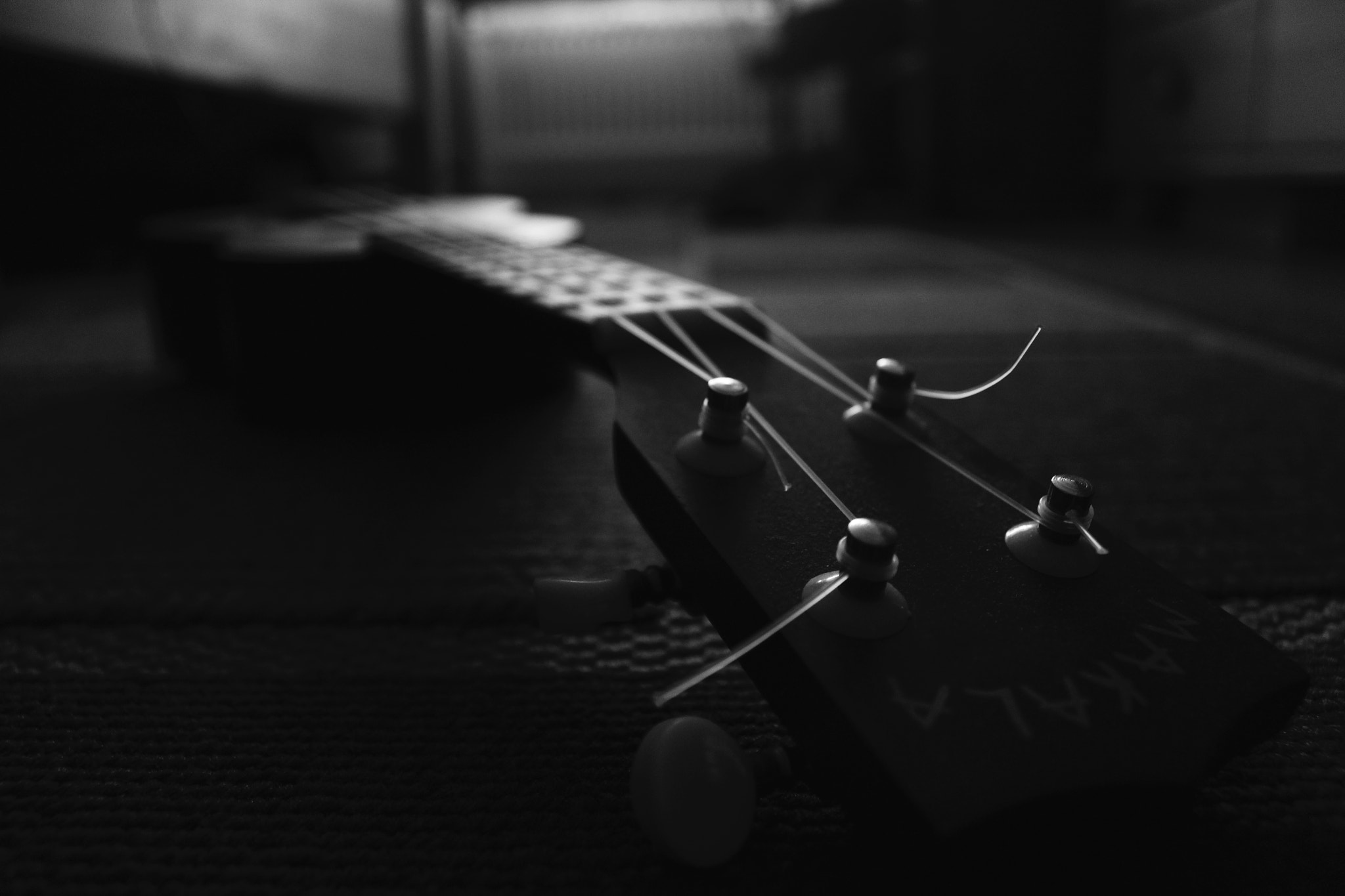 Photograph Photographers paint their pictures on Cameras. But musicians paint their pictures on silence. (♥) by Marcus Miess on 500px