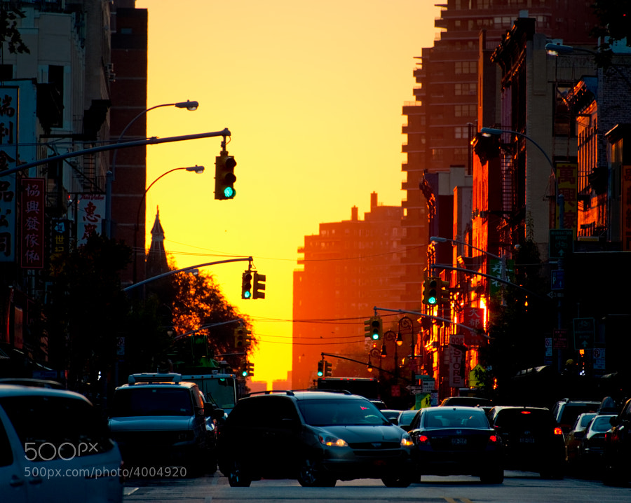A sea of orange sweeps down the road early in the morning in NYC