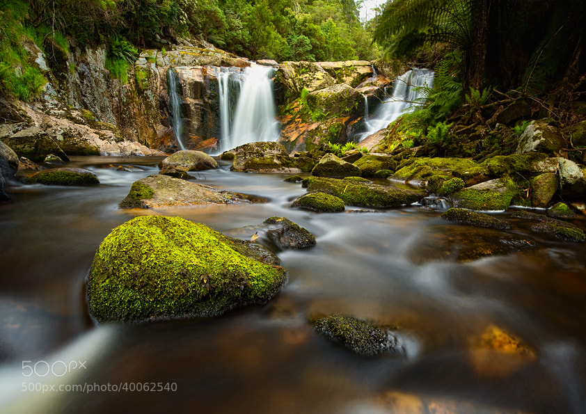 Photograph Hall fall by Paparwin Tanupatarachai on 500px