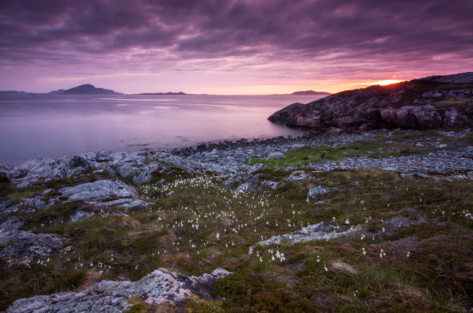 Photograph evening  by Justas R on 500px