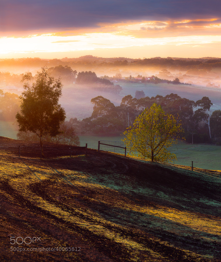 Photograph Elusive Light by Dylan Gehlken on 500px