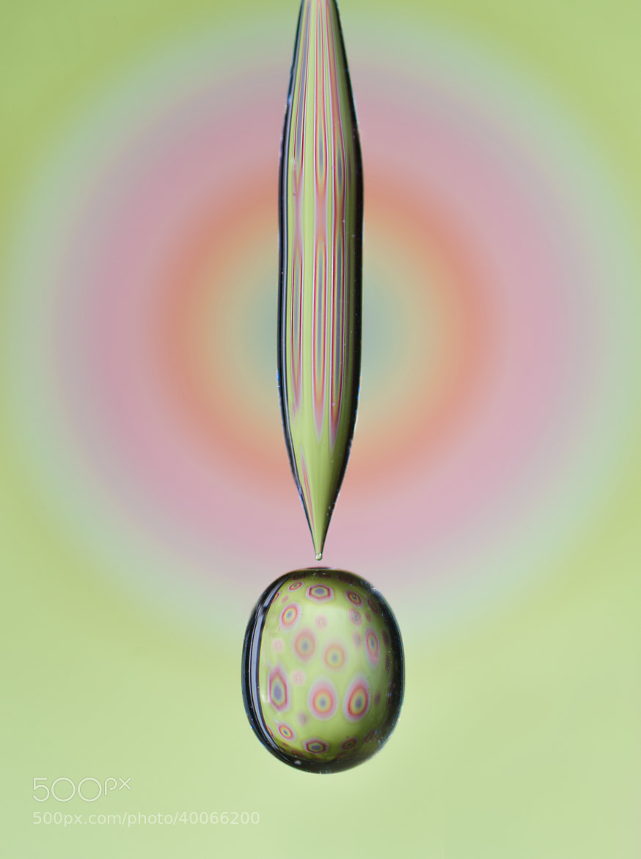 Photograph Microbe by LiquidArtCreations  on 500px