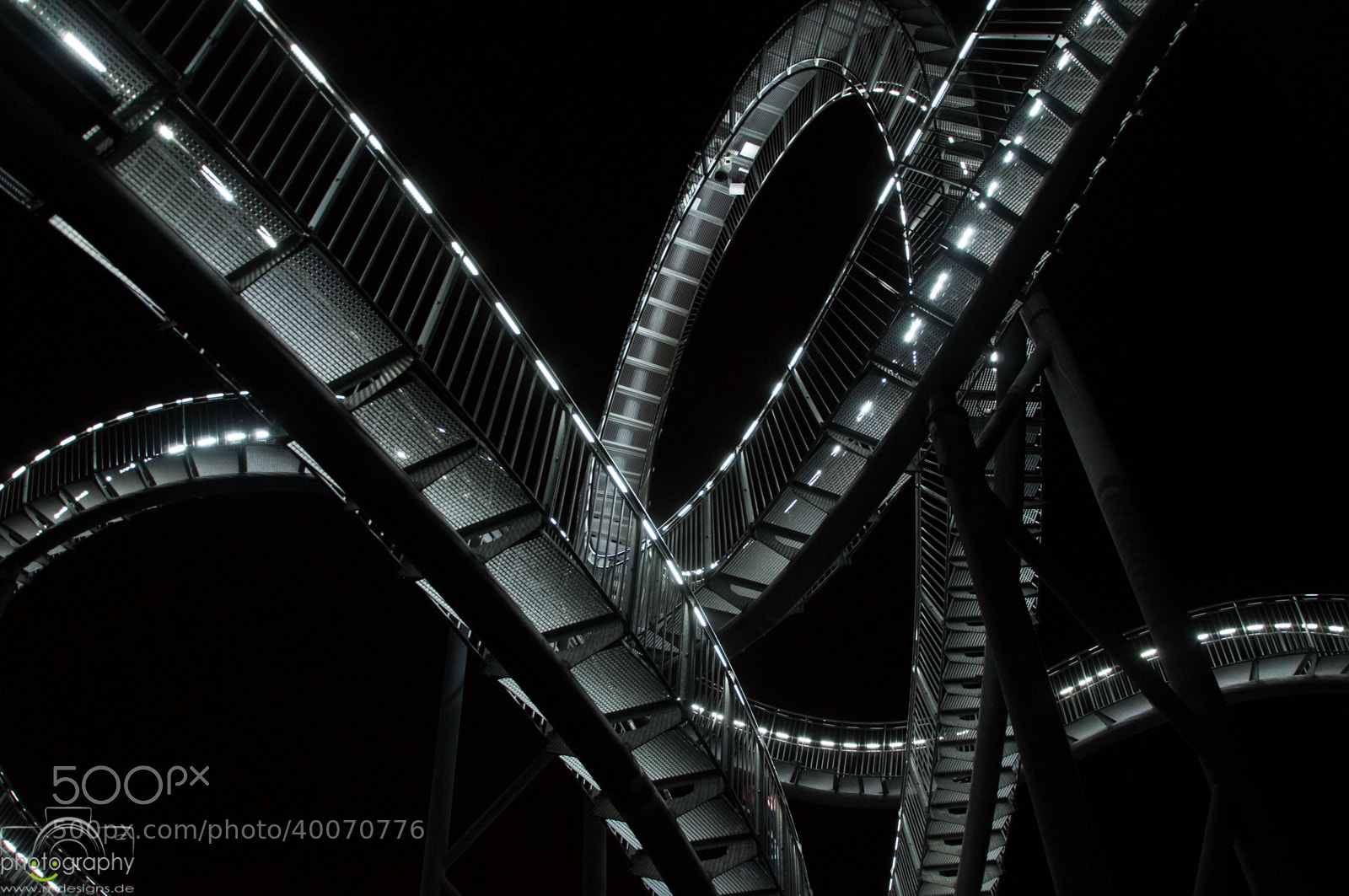 Photograph Tiger & Turtle II by Sascha Niklas on 500px
