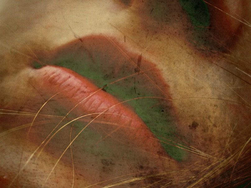 Photograph Lips by Mindeli Saba on 500px