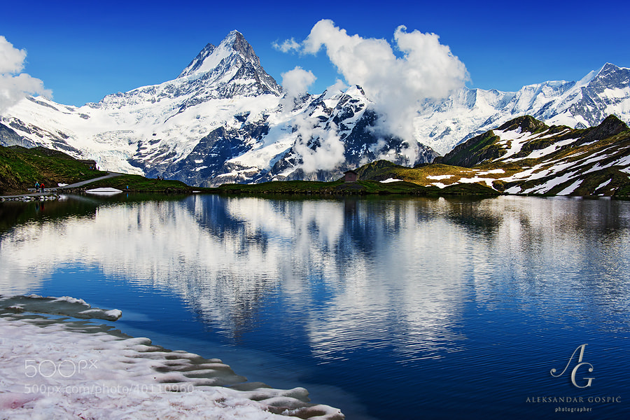 Schreckhorn (4078m), one of the highest peaks of the Bernese Alps, reflects in the Bachalpsee lake (2265m)