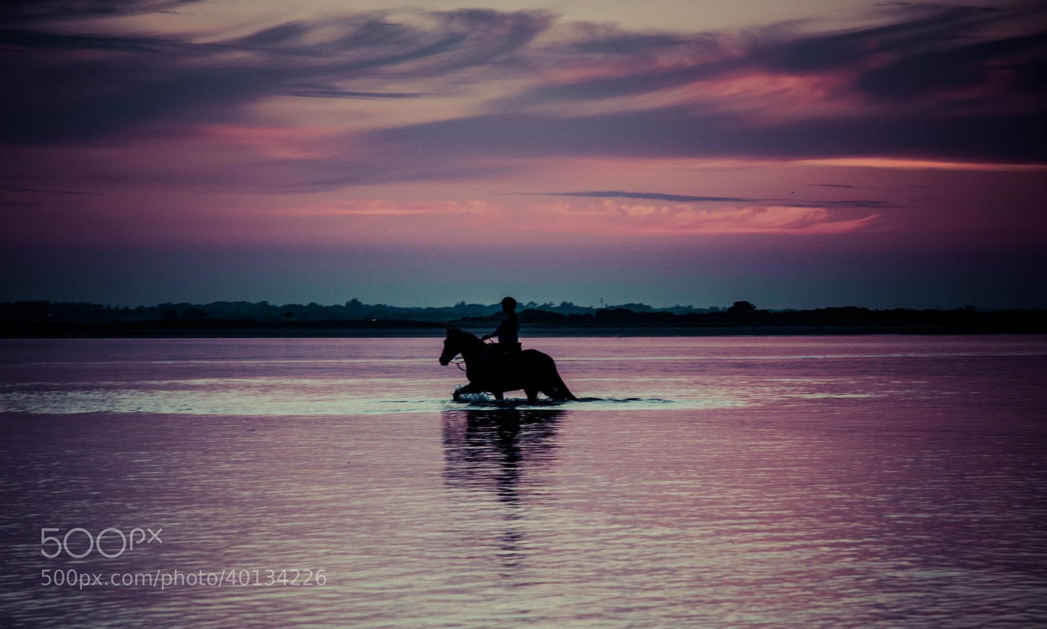 Photograph Sunset Rider by Dan Alexandru on 500px