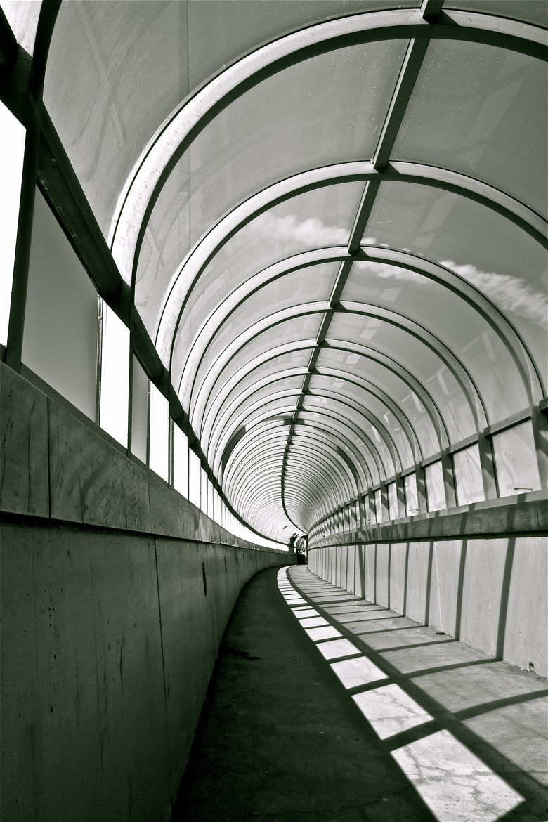 Photograph Tunnelling Thru Shadows by Kevin Haggith on 500px