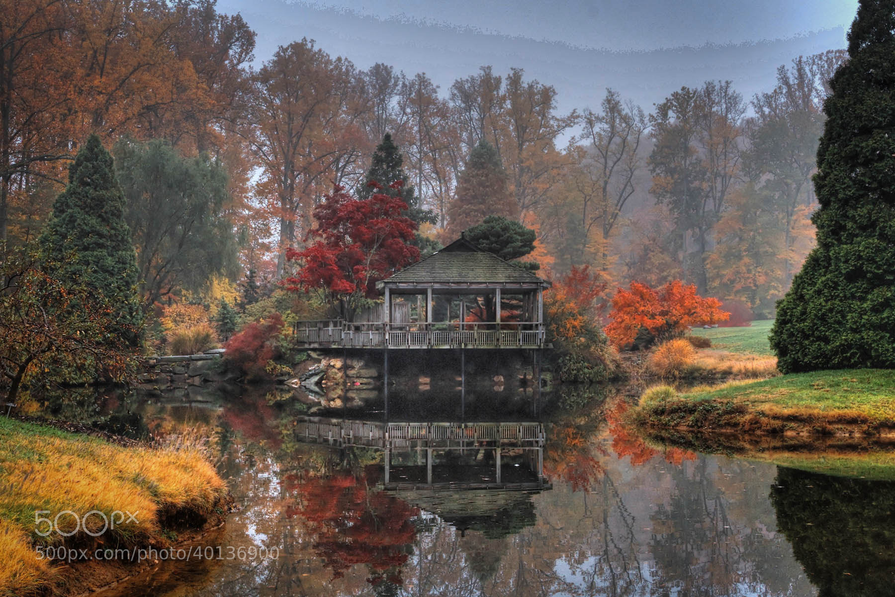 Photograph Shades of Orange by Hang Yuan on 500px