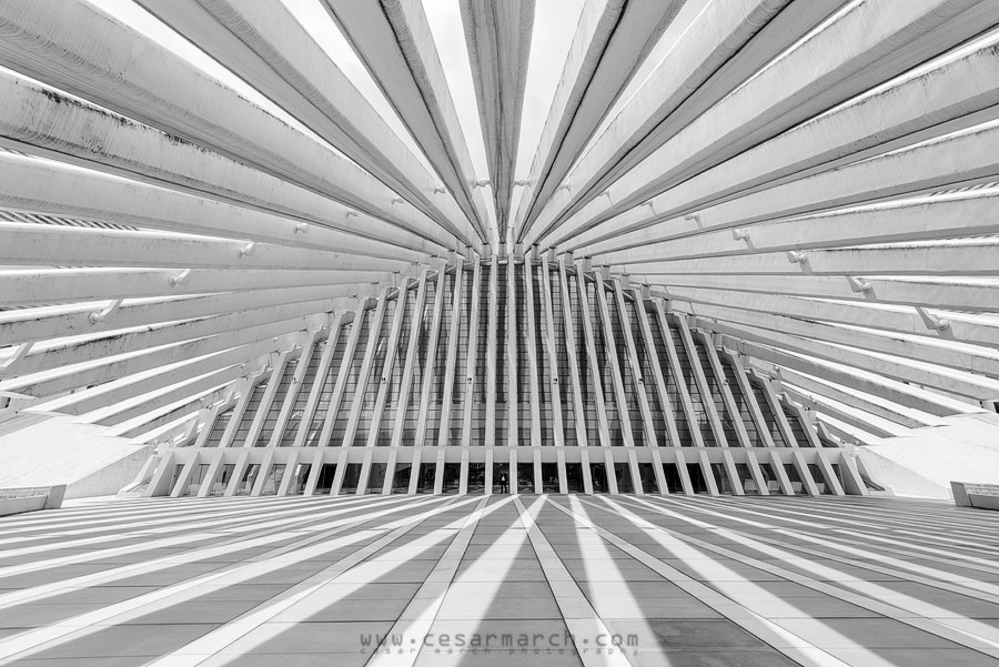 Photograph White lines II by Cesar March on 500px