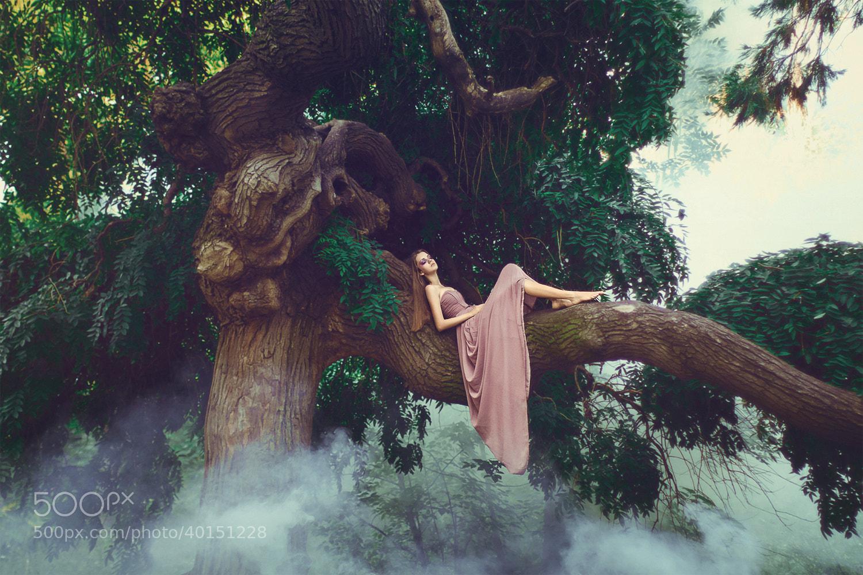 Photograph sleepy fairy by Julia Velikaya on 500px