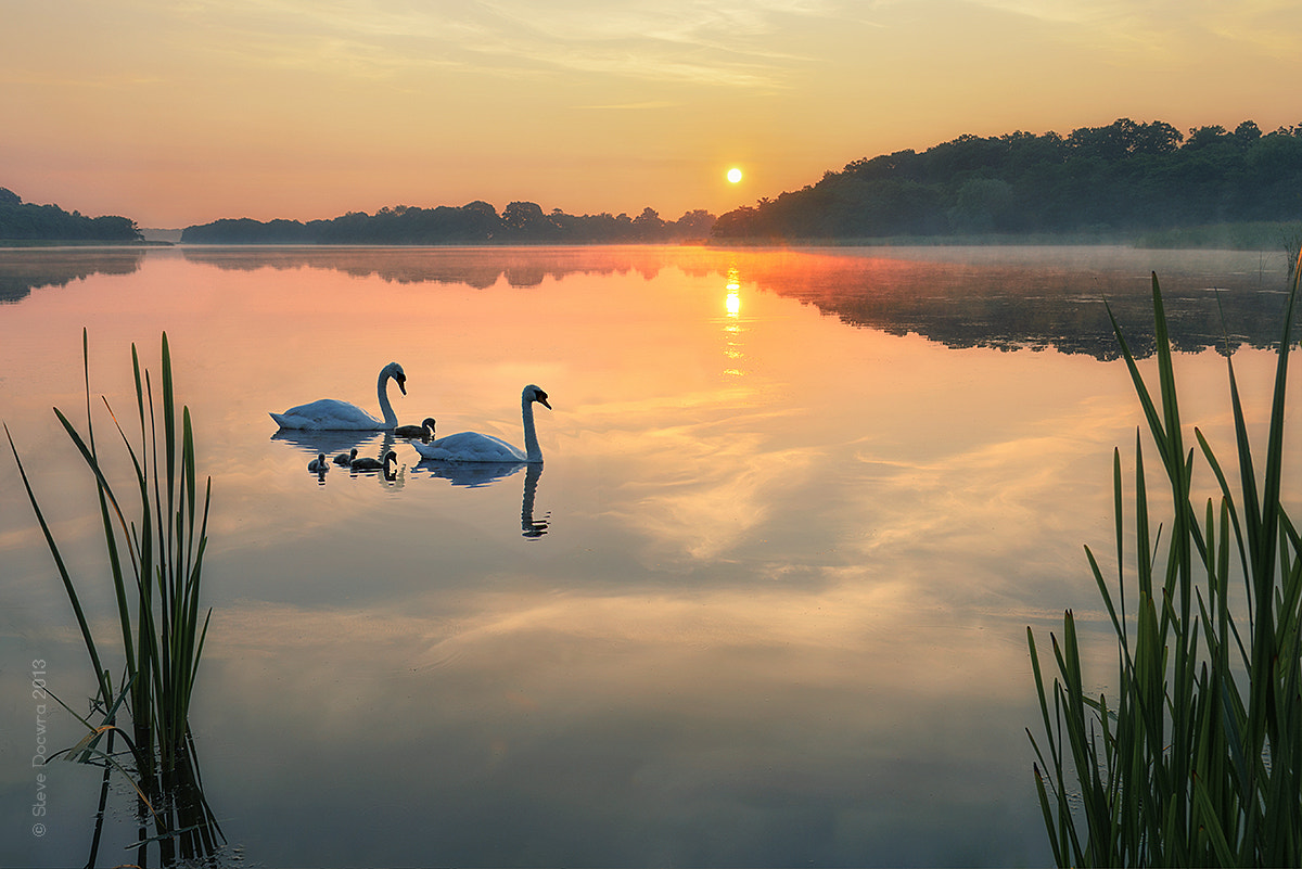 Photograph Dawn tranquility on the Norfolk Broads by Steve Docwra on 500px