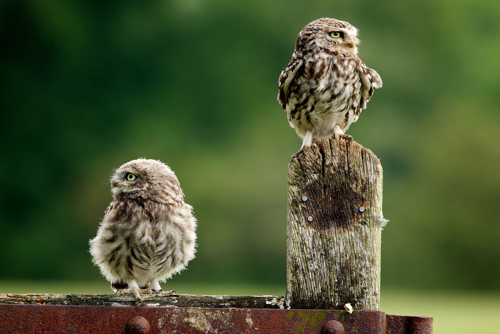 Photograph this way and that.. by Mark Bridger on 500px