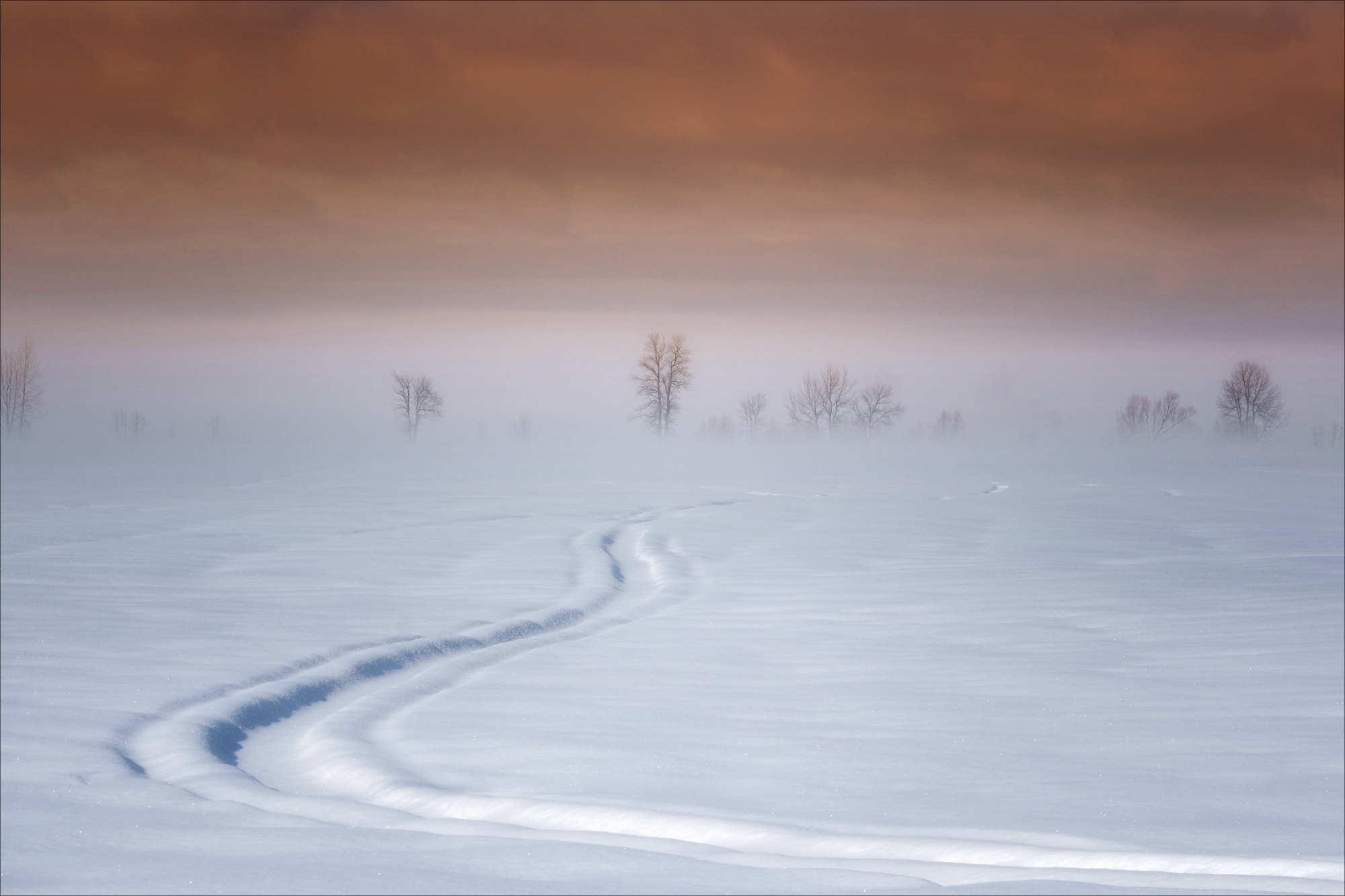 Photograph Old Track by Renald Bourque on 500px