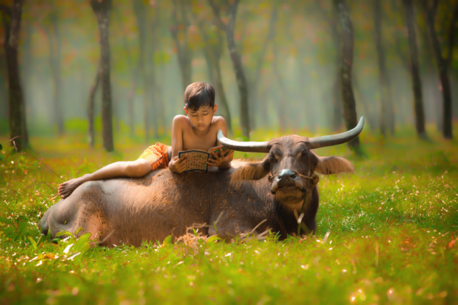 Photograph relax by Didi Nugroho on 500px