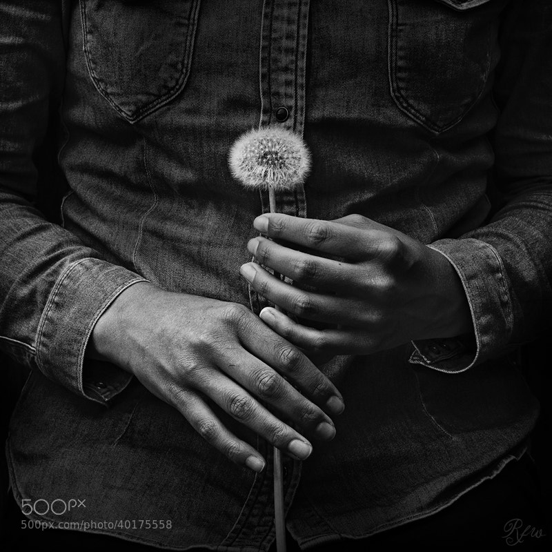 Photograph Hands with a Soul... by Sabrina de Vries on 500px