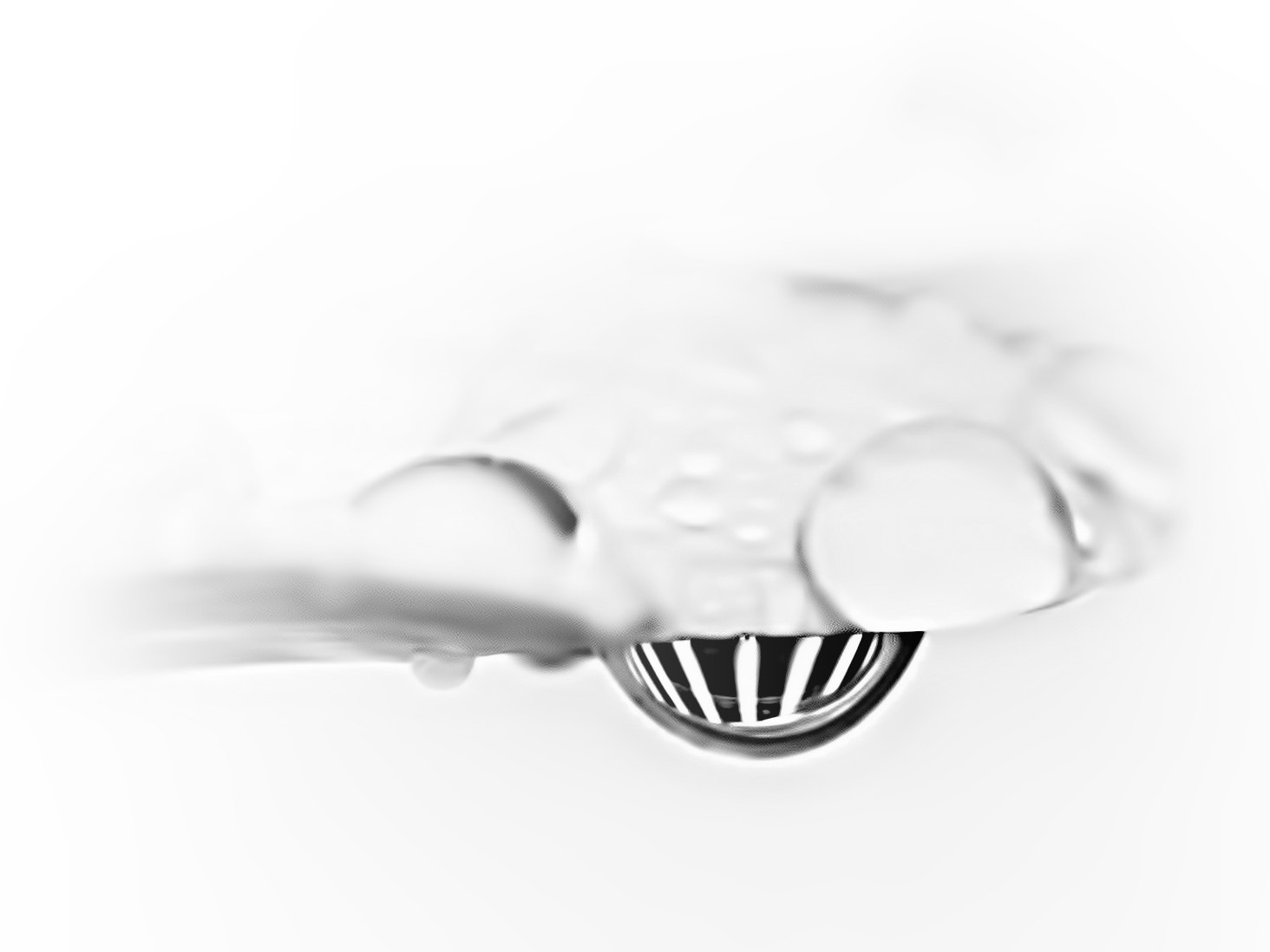 Photograph Waterdrop Reflections by Kevin Pepper on 500px