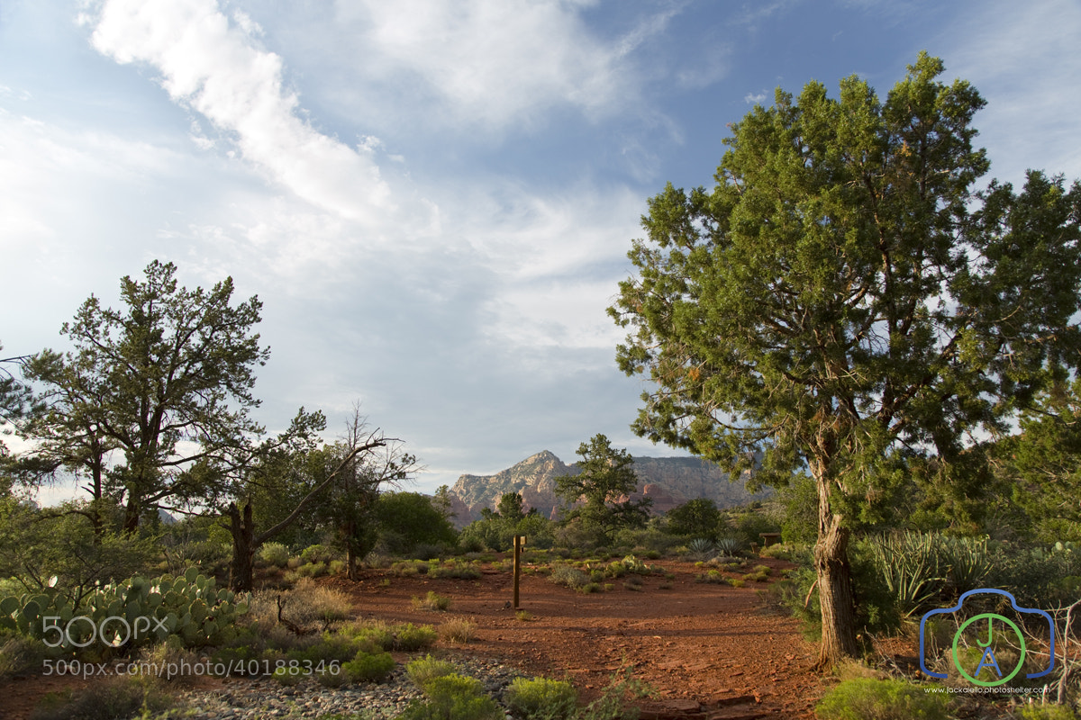 Photograph Hiking Trail Sedona by Jack L. Aiello on 500px
