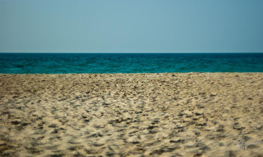 at the beach..