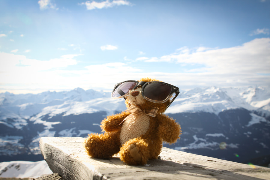 Teddy's having a rest by Markus Erne on 500px.com
