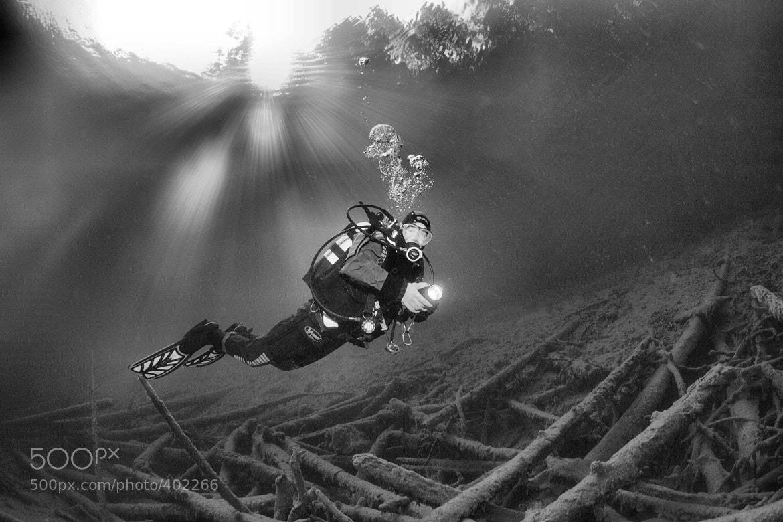 Photograph Diver in the Lake Sameranger | Taucher im Sameranger See by Gerald Backmeister on 500px