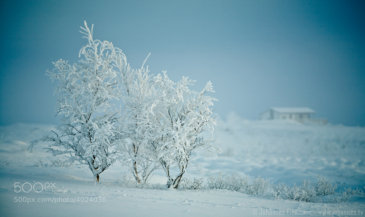 Photograph Winter time by Johannes Eiriksson on 500px