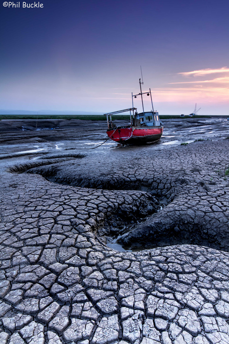 Photograph Mudlark by Phil Buckle on 500px