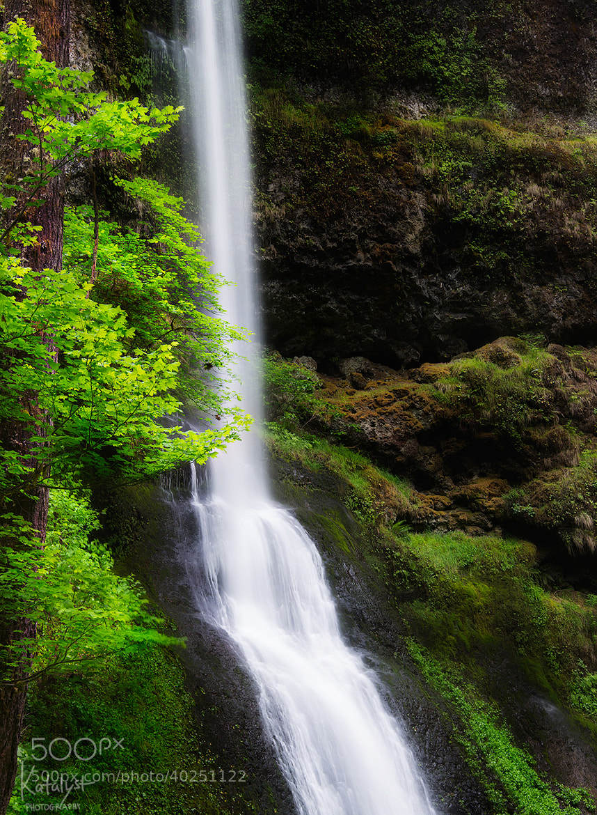Photograph Silver Falls by Salty Cat on 500px