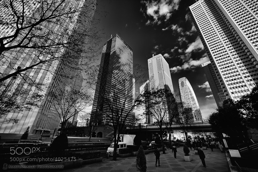 Photograph Shinjuku Highrises by Martin Bailey on 500px