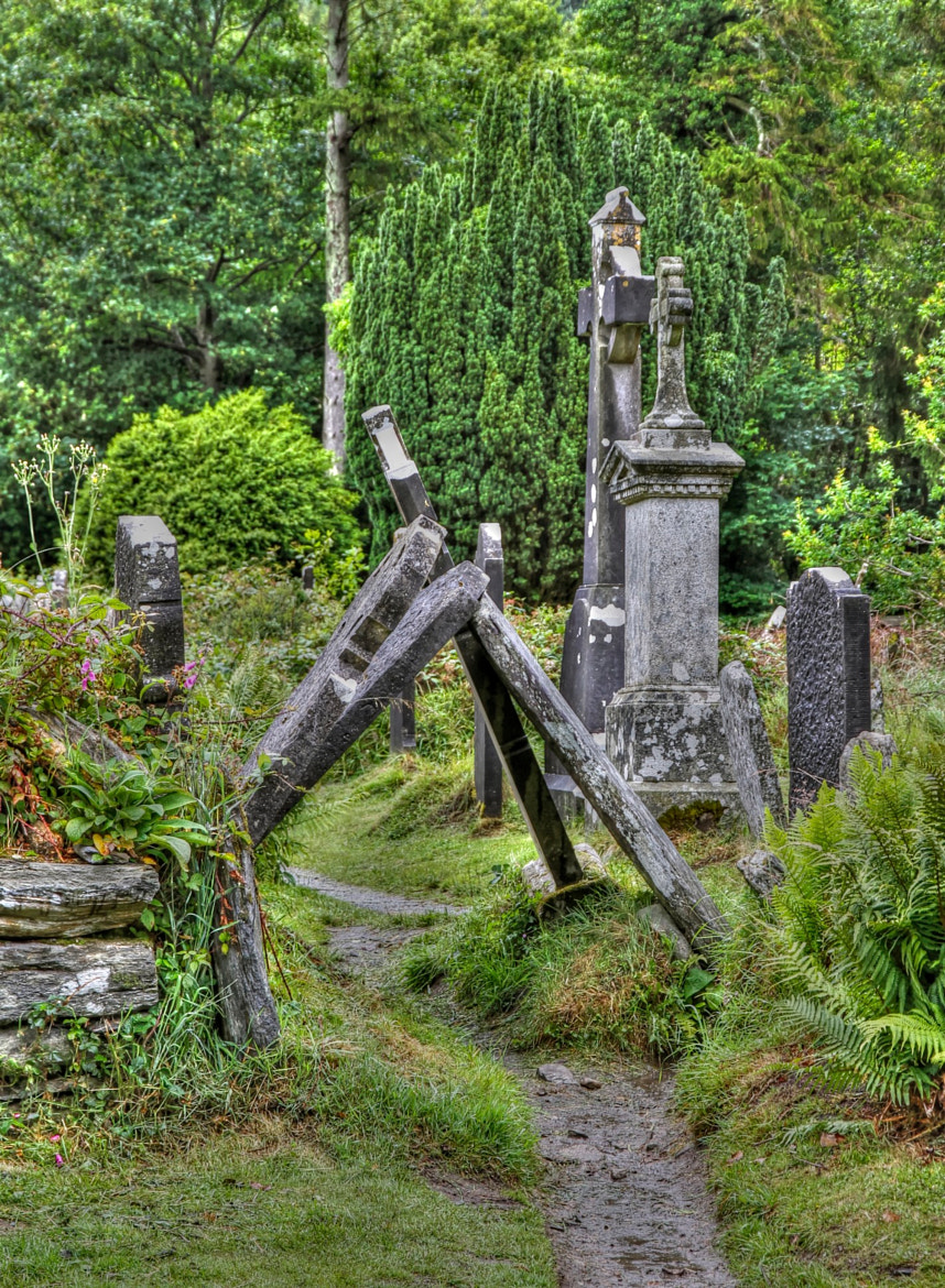 Photograph The forgotten graves at Glendalough, Ireland by Vicki Hoelsæther on 500px