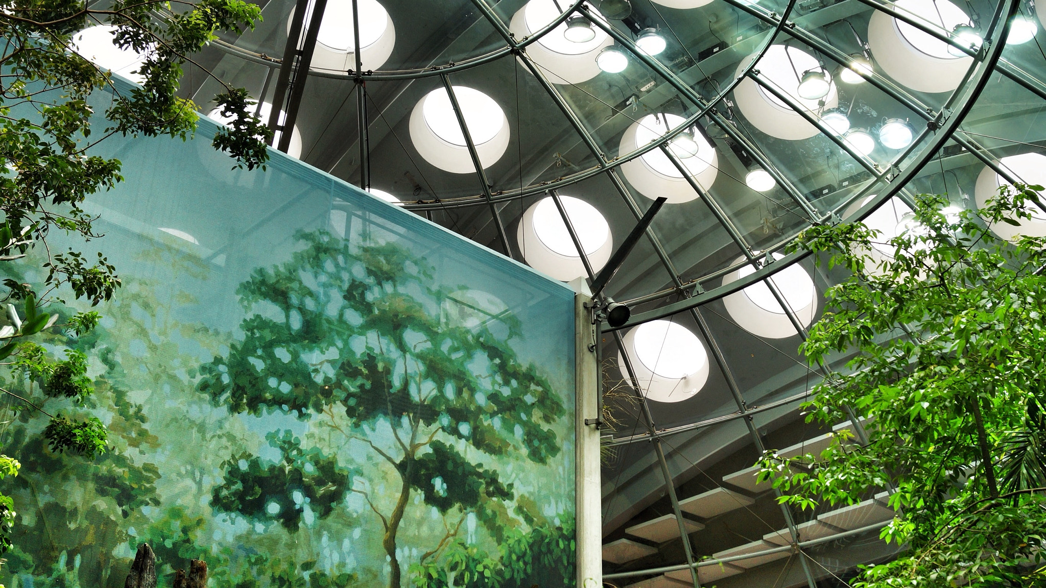 Photograph Under the Living Roof by Al Fichera on 500px