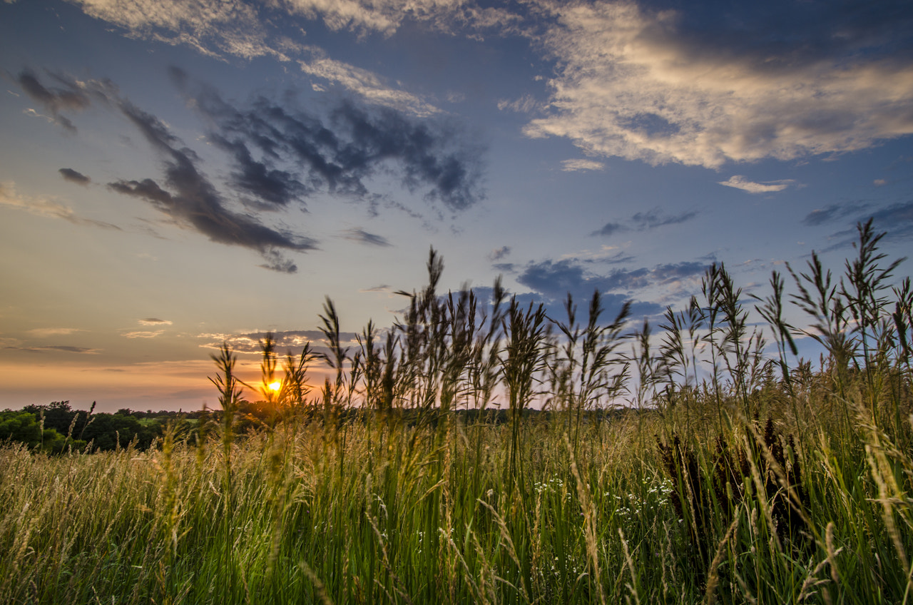 Photograph Summer Breeze by Rusty Parkhurst on 500px