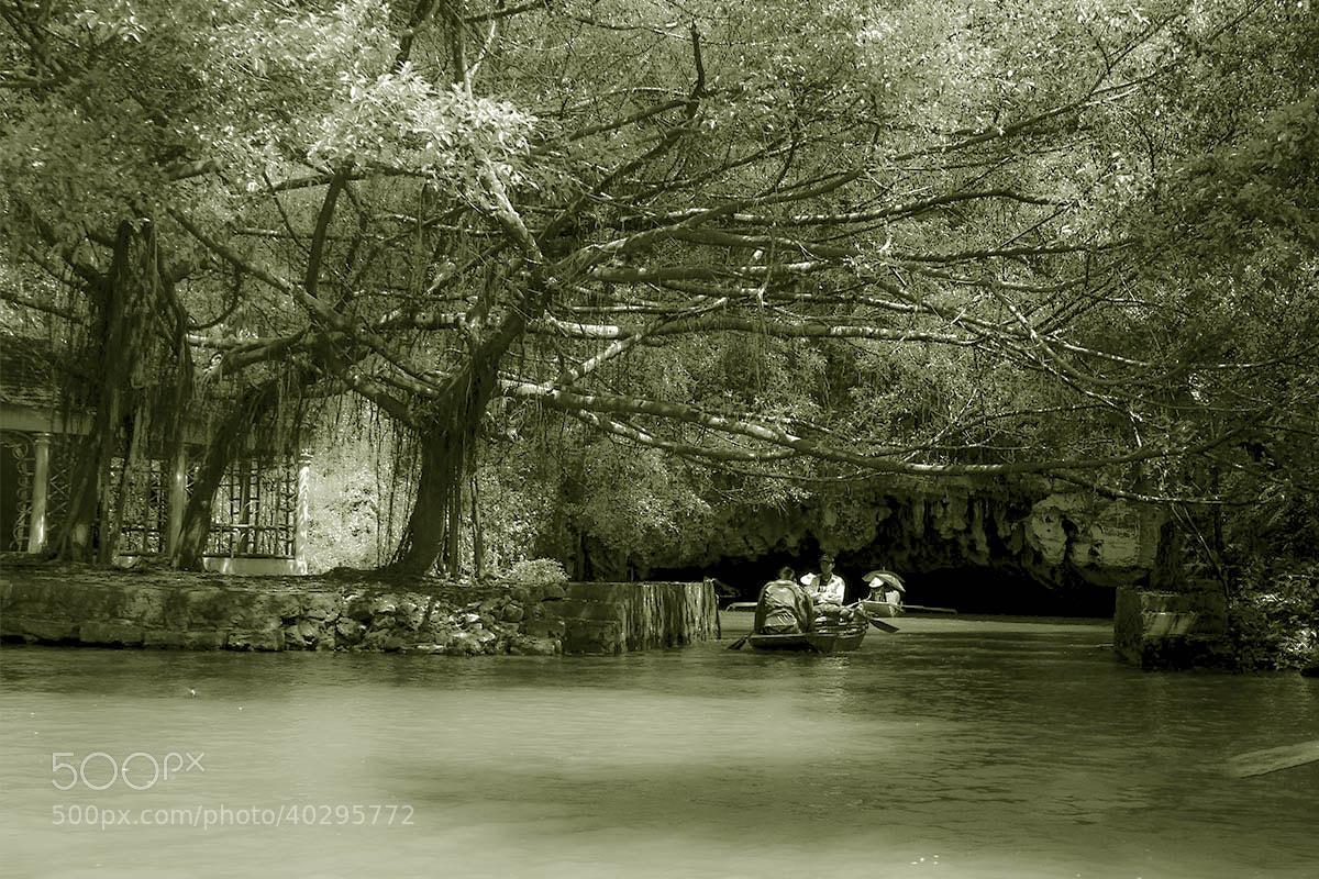 Photograph TAM CỐC - BÍCH ĐÔNG - VIET NAM by Tuan Nguyen Anh on 500px