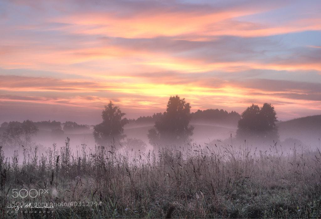 Photograph Mist by Jurgis Mankauskas on 500px