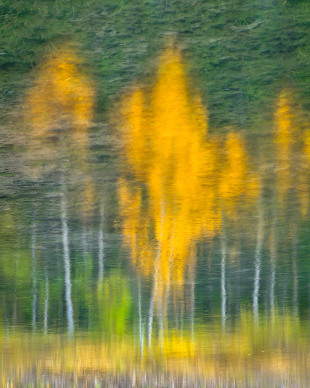 Photograph Painted Reflections by Mike Isaak on 500px