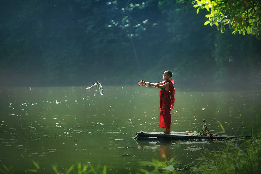 Photograph free.... by asit  on 500px